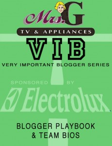Blogger PlaybookCover